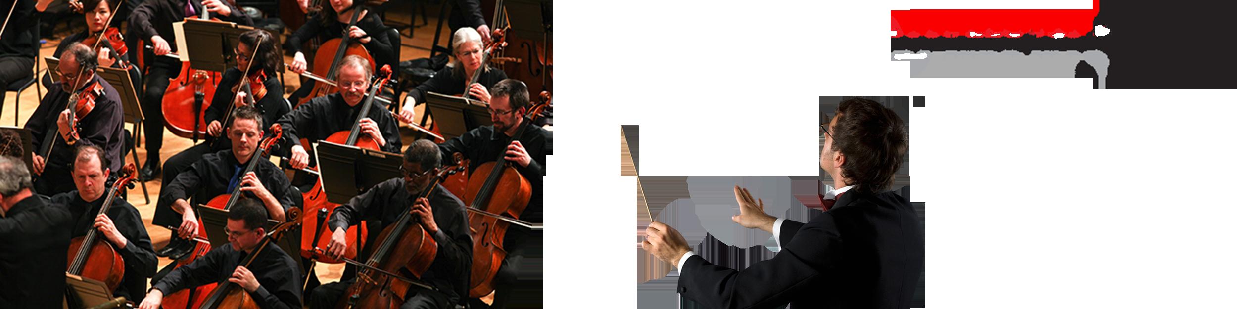 สถาบันการดนตรี De-symphony